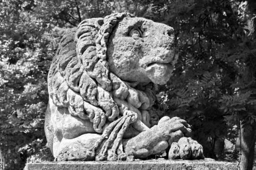sculpture lion megalith memorial ancient carving stone statue culture