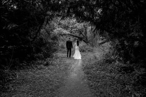 trail forest groom bride tree landscape wood