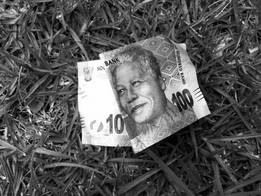grass  lawn  money  material  note  cash