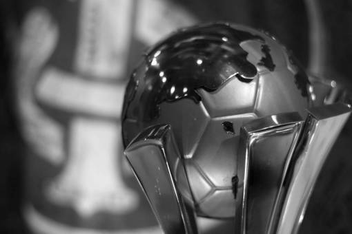 bowl  red  close up  iron man  organ  trophy