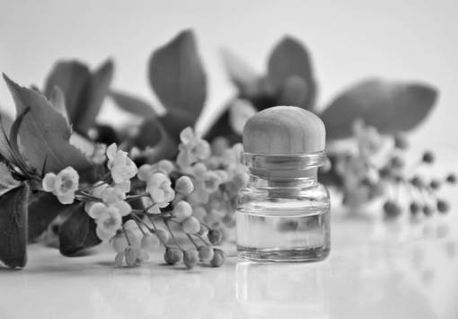 essential oil  aromatherapy  cosmetic oil