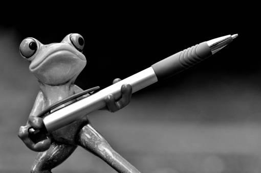 sweet  pen  cute  green  office  amphibian