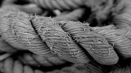 rope  wood  texture  leaf  flower  orange