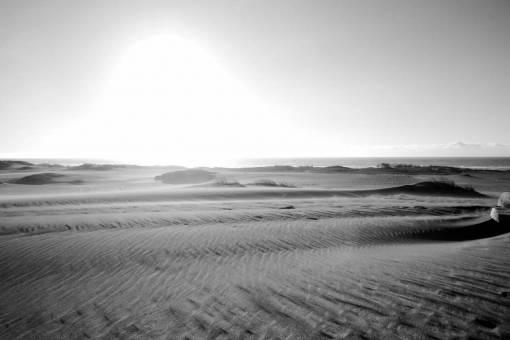 arid  barren  beach  desert  dry  dune