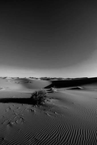 arid  barren  blue sky  clear sky  desert