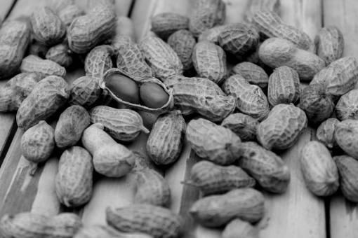 blur  fruit  texture  dry  pattern  food