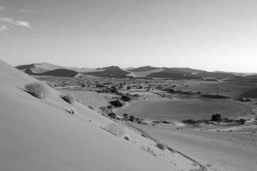 landscape  desert  valley  sand dune  dry