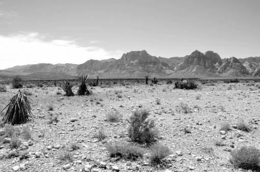 landscape  horizon  wilderness  mountain
