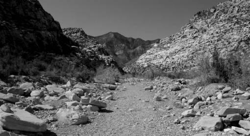 wilderness  walking  trail  arid  desert