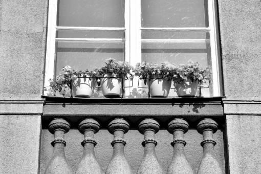flowerpot balcony facade concrete decoration sill urban architecture windows area street
