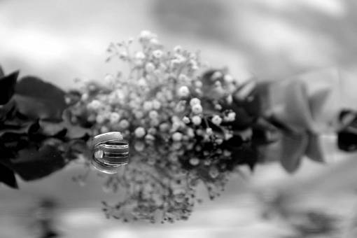 reflection platinum metallic rings jewelry herb environment transparent ring flower wedding