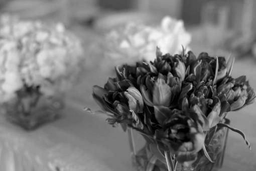 vase glass tulips reddish flower flowers plant spring pink  paley babe blume tulpen anlage rosa hochzeit blumen fruehling roetlich